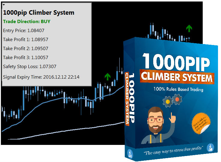 The Forex system for success